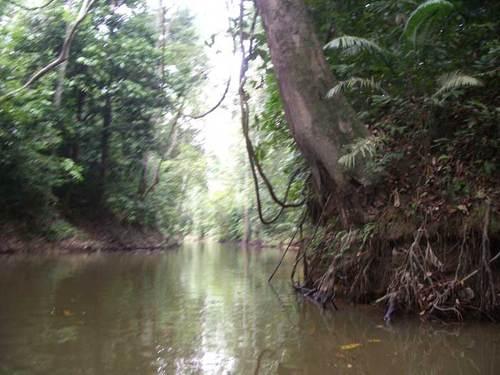 Rivière Cini