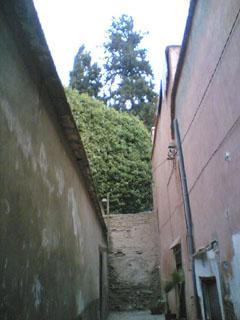 Au fond de la ruelle, le jardin du Glaoui